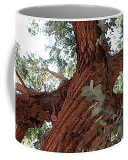 Coffee Mug featuring the painting White Eucalyptus Tree by Jennifer Muller