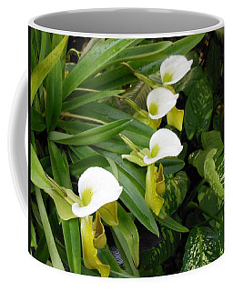 White Flower Array Coffee Mug by Kay Gilley
