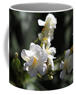 Coffee Mug featuring the photograph White Flower - Early Spring Time by Ramabhadran Thirupattur
