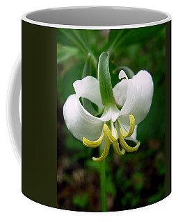 White Flowering Rose Trillium Coffee Mug