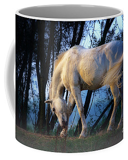 White Horse In The Early Evening Mist Coffee Mug by Nick  Biemans
