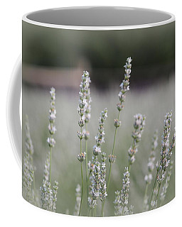 Coffee Mug featuring the photograph White Lavender by Lynn Sprowl