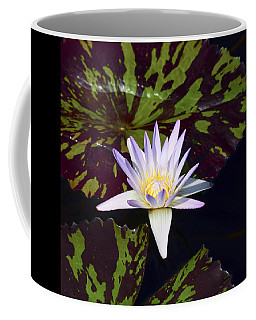 White Water Lily Coffee Mug
