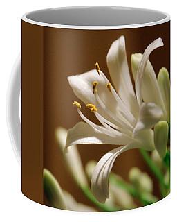 White Lily Coffee Mug by Joseph Skompski