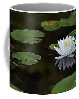White Lotus Lily Flower And Lily Pad Coffee Mug by Glenn Gordon