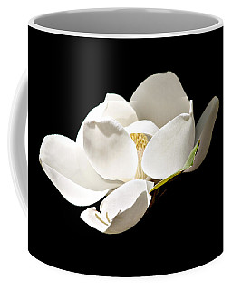 White Magnolia  Coffee Mug by Debra Forand