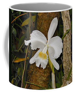 White Orchid Coffee Mug by Kay Gilley