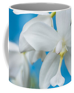 Coffee Mug featuring the photograph White Orchid by Leigh Anne Meeks