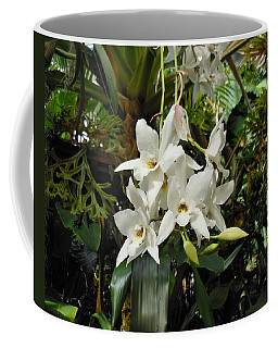 White Orchids Coffee Mug by Kay Gilley