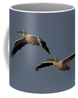 Coffee Mug featuring the photograph White Pelican Photograph by Meg Rousher
