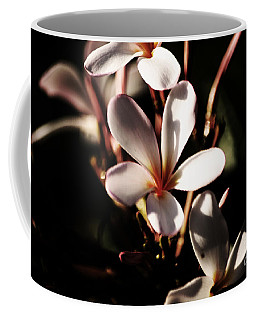 White Plumeria Coffee Mug