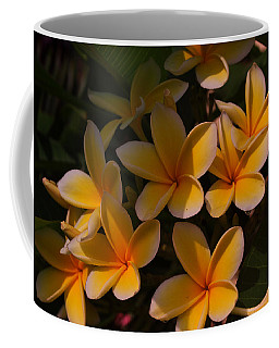 Coffee Mug featuring the photograph White Plumeria by Miguel Winterpacht