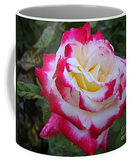White Rose With Pink Texture Hybrid Coffee Mug
