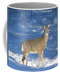 Coffee Mug featuring the photograph White Tail Deer by Brenda Brown