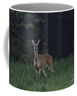 White-tailed Deer Coffee Mug