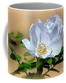 White Tea Rose Coffee Mug