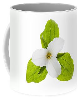 White Trillium Flower  Coffee Mug