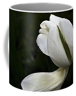 Coffee Mug featuring the photograph White Tulip by Nadalyn Larsen