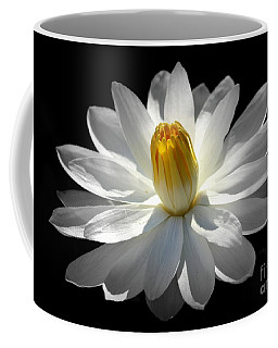White Water Lily #2 Coffee Mug