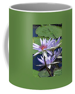 Coffee Mug featuring the photograph White Waterlilies by Chrisann Ellis