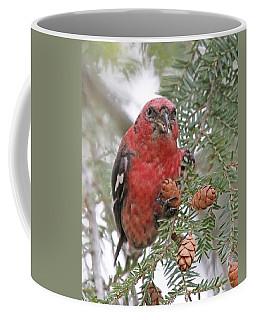 White-winged Crossbill Coffee Mug