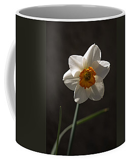 White Yellow Daffodil Coffee Mug