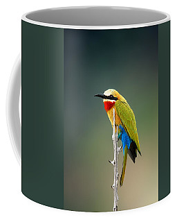 Whitefronted Bee-eater Coffee Mug