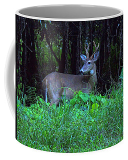 Whitetail Buck 015 Coffee Mug