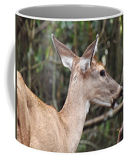 Whitetail Deer 038 Coffee Mug