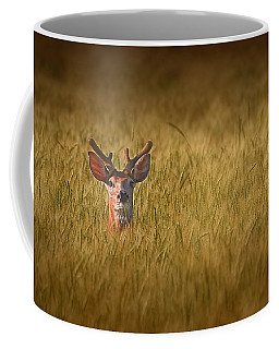 White-tailed Deer Coffee Mugs