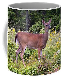 Whitetail Deer Coffee Mug