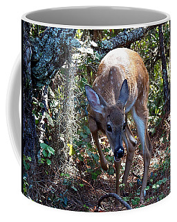 Coffee Mug featuring the photograph Whitetail Fawn 008 by Chris Mercer