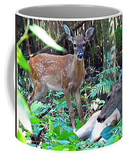 Whitetail Fawn 013 Coffee Mug