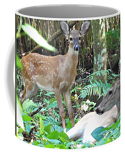 Whitetail Fawn 014 Coffee Mug