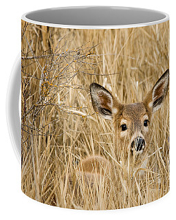 Whitetail In Weeds Coffee Mug
