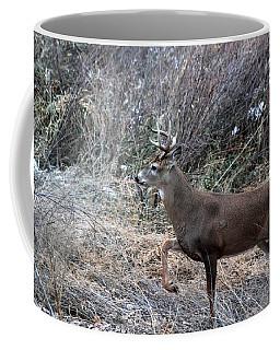 Whitetail Stance Coffee Mug