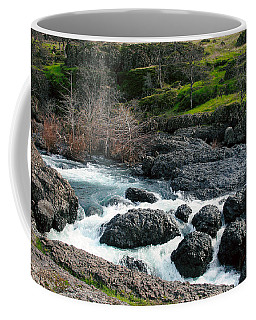 Whitewater At Bear Hole Coffee Mug