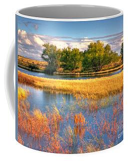 Whitewater Draw Coffee Mug