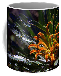 Coffee Mug featuring the photograph Who Am I by Miroslava Jurcik