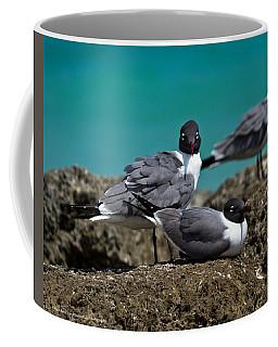 Why You Looking? Coffee Mug