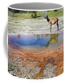 Wild And Free In Yellowstone Coffee Mug