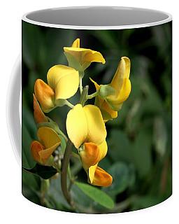 Coffee Mug featuring the photograph Wild Bonanza by Ramabhadran Thirupattur
