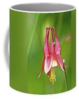 Wild Columbine Flower Coffee Mug