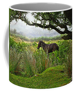 Wild Dartmoor Foal Coffee Mug
