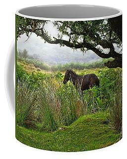 Wild Dartmoor Foal Coffee Mug by Menega Sabidussi