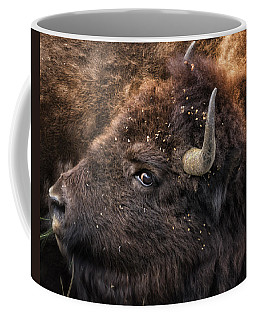 Wild Eye - Bison - Yellowstone Coffee Mug