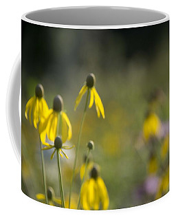 Coffee Mug featuring the photograph Wild Flowers by Daniel Sheldon