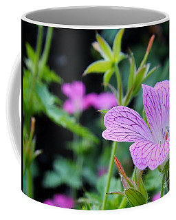 Wild Geranium Flowers Coffee Mug by Clare Bevan