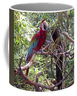 Coffee Mug featuring the photograph Wild Hawaiian Parrot  by Joseph Baril