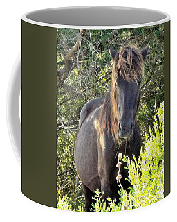 Wild Horse Close Up Coffee Mug